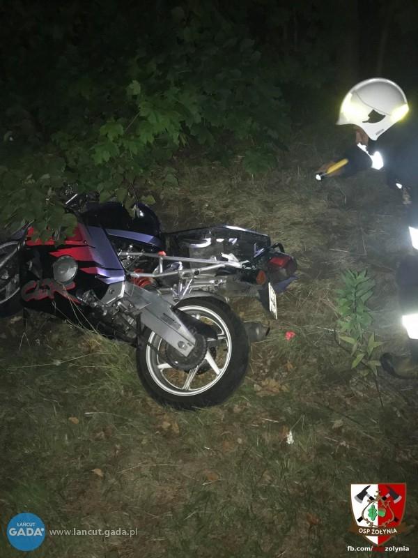 Łoś wbiegł pod koła motocykla