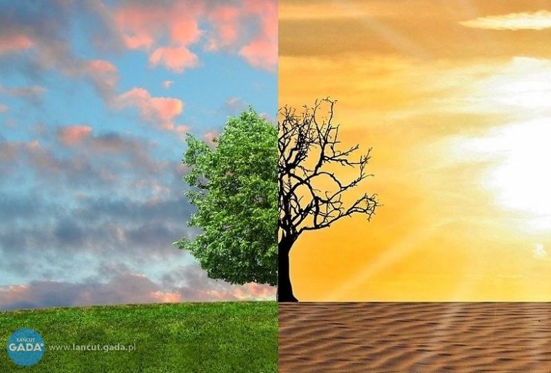 Każdy może przeciwdziałać globalnemu ociepleniu