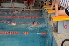 Pływacka liga sześciu miast