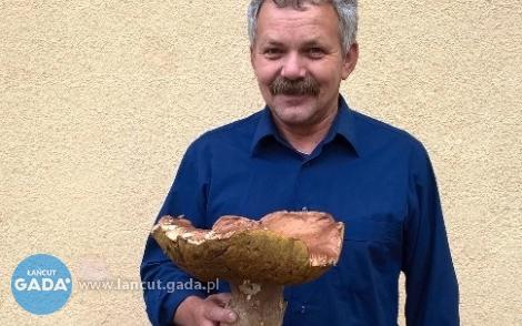 Sezon grzybowy wpełni