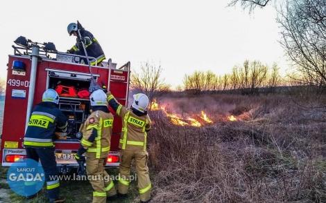 7 podpaleń traw
