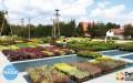 Nowa szkółka roślin ozdobnych wŁańcucie