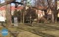UWAGA! Dzikie zwierzęta uciekły ztransportu [FOTO]